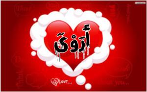 صور ومعنى اسم اروى Arwa نجوم سورية